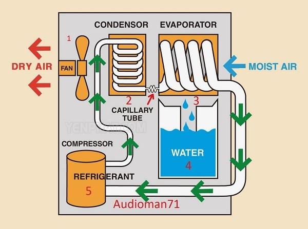 cấu tạo và nguyên lý hoạt động của máy hút ẩm ngưng tụ