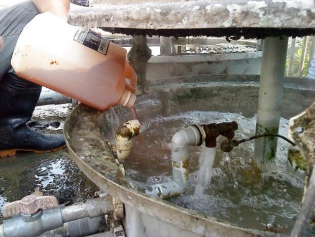 Tại sao phải làm sạch rong rêu ở bên trong tháp giải nhiệt