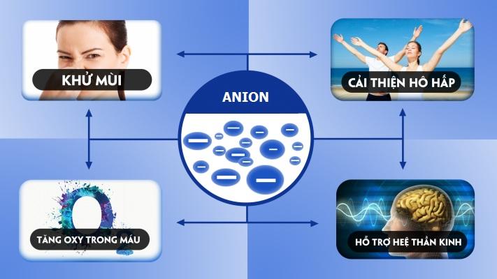 tác dụng của anion đối với sức khỏe